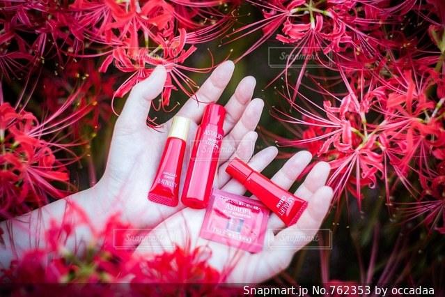 近くの花のアップの写真・画像素材[762353]