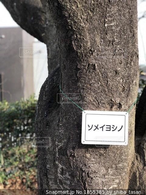 建物の側面にある記号の写真・画像素材[1855385]