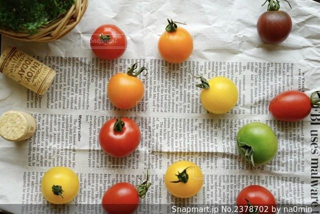 たくさんのミニトマトの写真・画像素材[2378702]