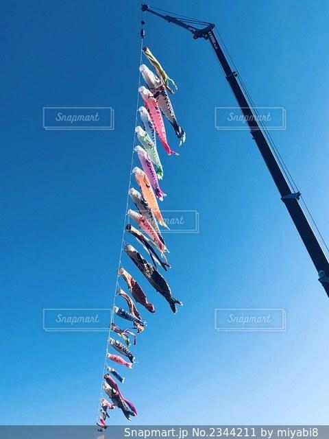空を泳ぐ、多色な鯉のぼりの写真・画像素材[2344211]