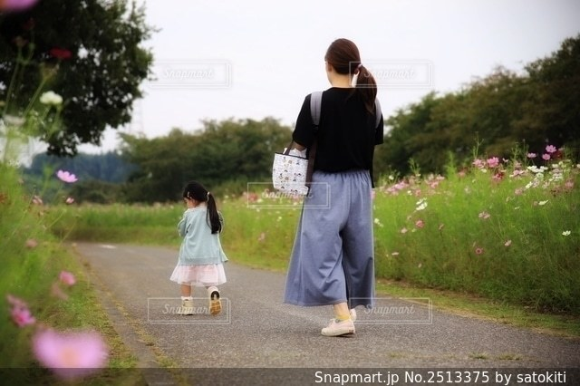 コスモス畑を歩くの写真・画像素材[2513375]