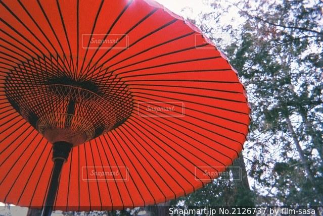 大きな赤い傘の写真・画像素材[2126737]