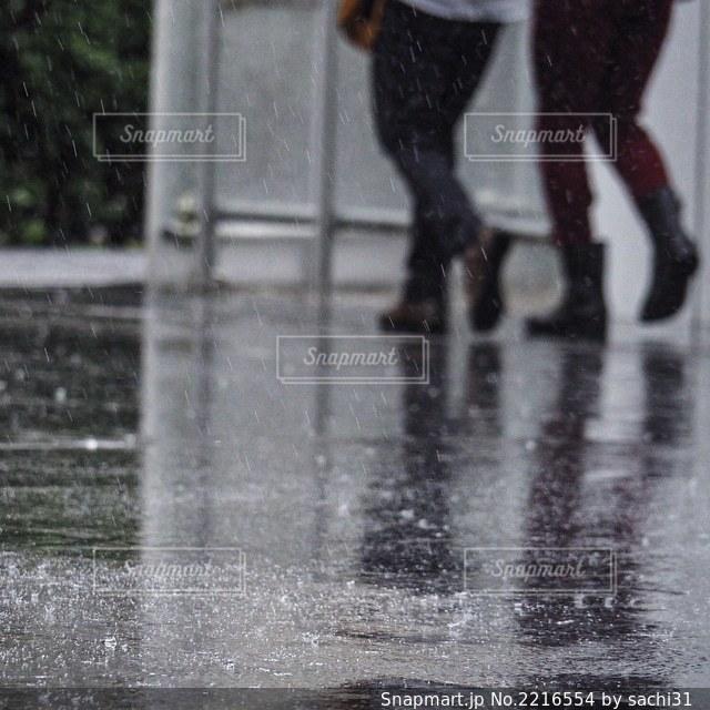 雨飛沫の写真・画像素材[2216554]