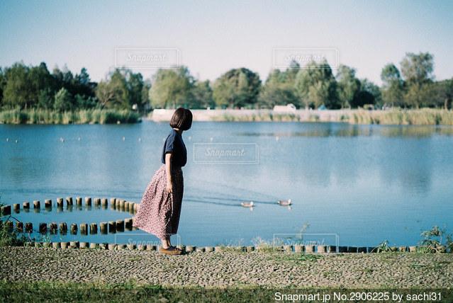 池の畔での写真・画像素材[2906225]