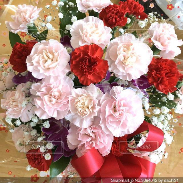 カーネーションの花束の写真・画像素材[3084042]