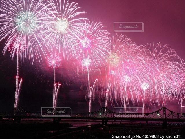 夜空の花火の写真・画像素材[4659863]