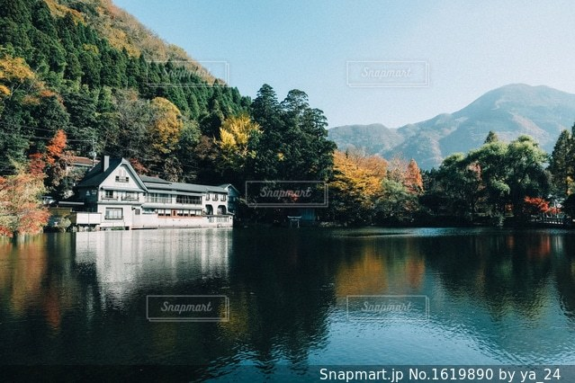金鱗湖の写真・画像素材[1619890]