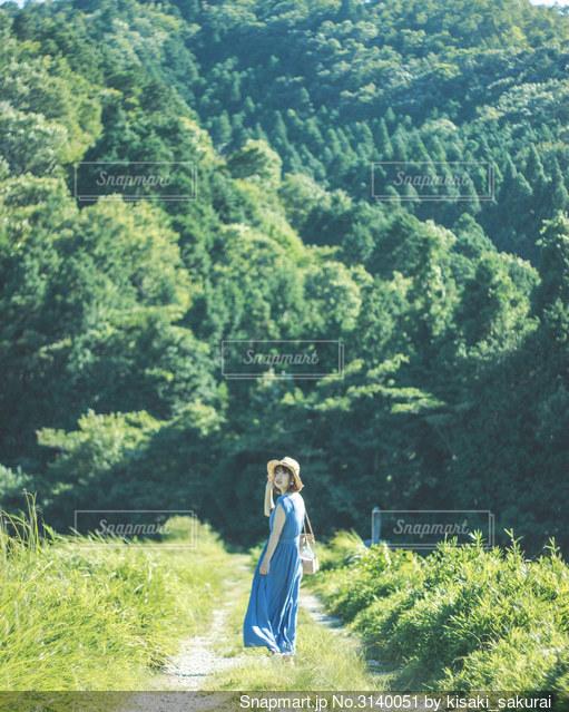 大自然の中の夏の女の子の写真・画像素材[3140051]