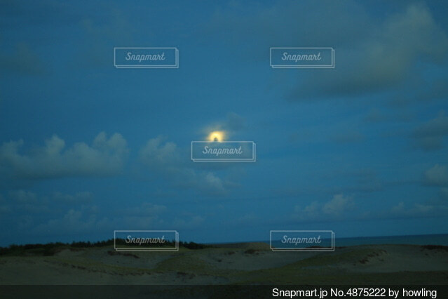 陽月の写真・画像素材[4875222]