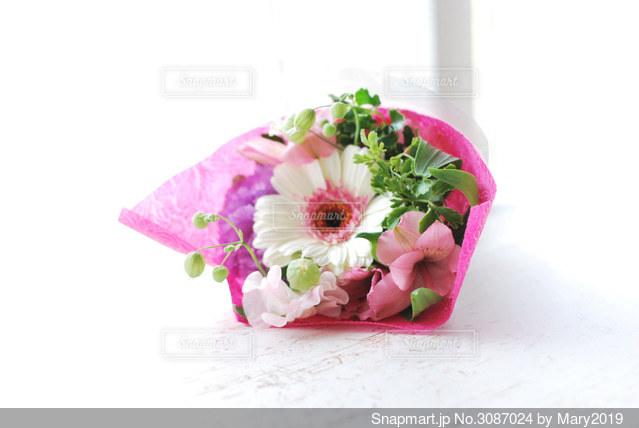 ピンクの花の写真・画像素材[3087024]