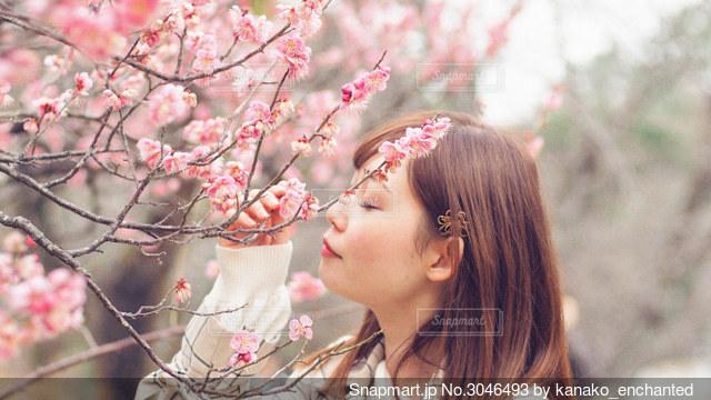 ピンクの花を着て女性の写真・画像素材[3046493]