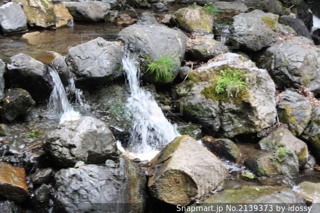 貴船山中の川の流れの写真・画像素材[2139373]