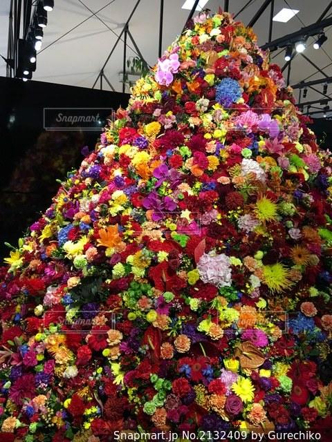 色とりどりの花の写真・画像素材[2132409]