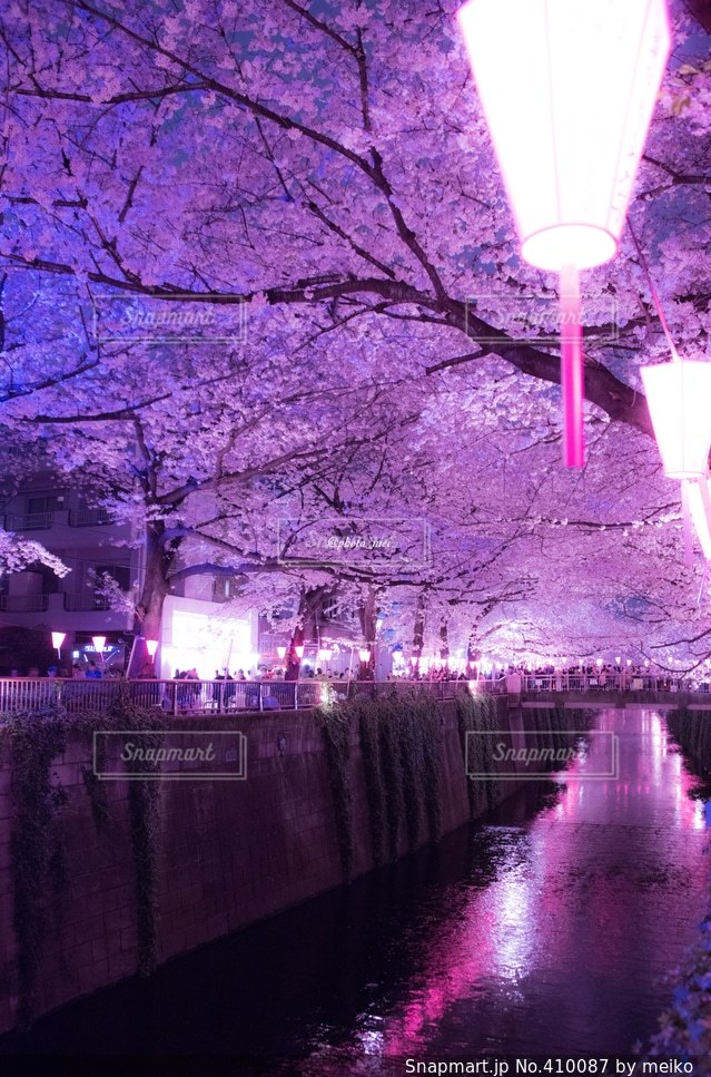 春 - No.410087