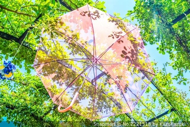 木からぶら下がる傘のクローズアップの写真・画像素材[2221518]