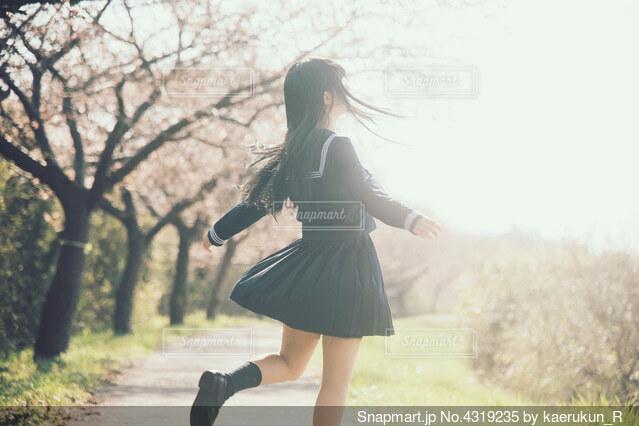 桜とセーラー服の写真・画像素材[4319235]