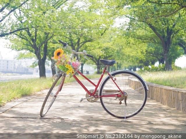 道路の脇に駐車した自転車の写真・画像素材[2382164]