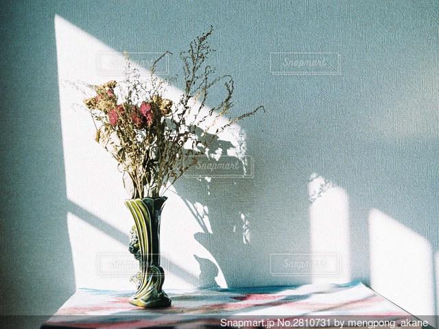 部屋で花瓶に飾られたドライフラワーの写真・画像素材[2810731]