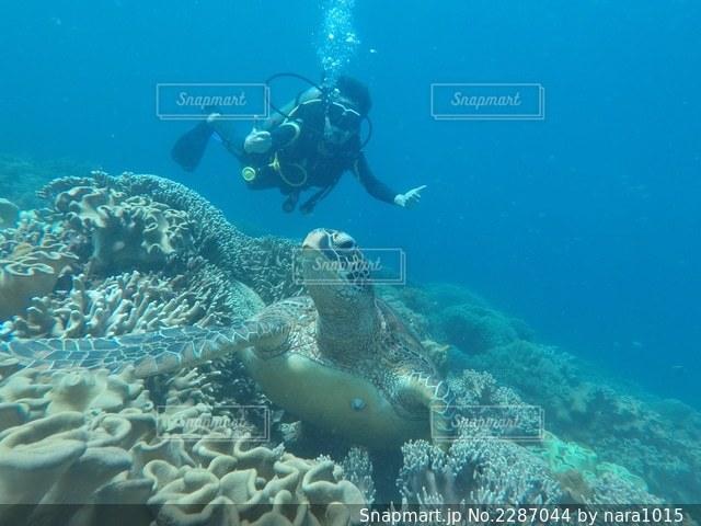 スイミングプールの水中ビューの写真・画像素材[2287044]