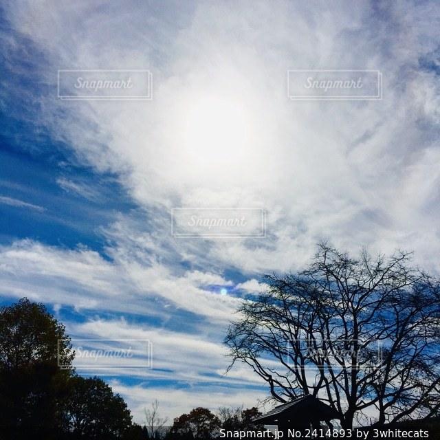 沢山の流れるような雲の写真・画像素材[2414893]