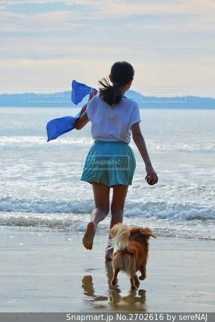 海へ向かう少女と犬の後ろ姿の写真・画像素材[2702616]