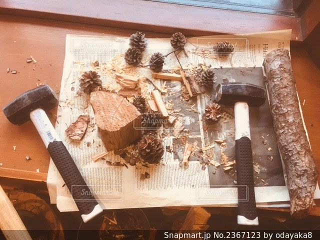 松ぼっくりは自然の着火剤の写真・画像素材[2367123]