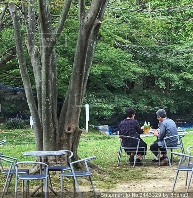 ピクニックテーブルに座っている人々のグループの写真・画像素材[2443329]