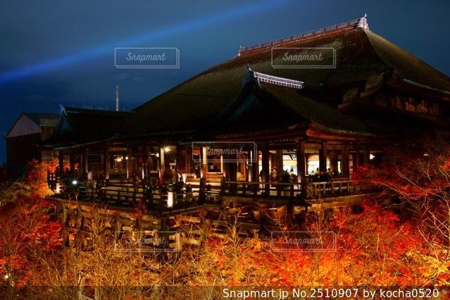 清水寺の紅葉とライトアップの写真・画像素材[2510907]