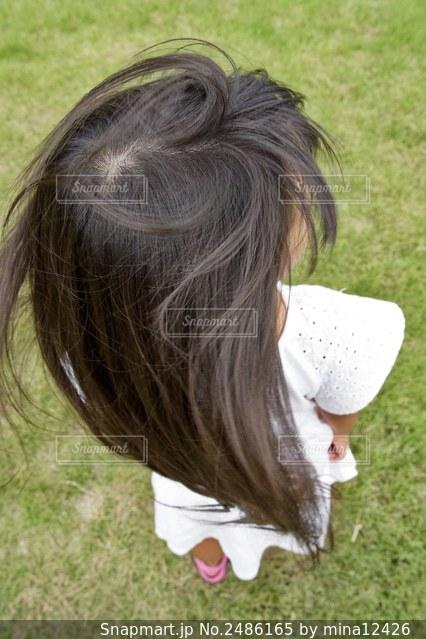 揺れる髪の写真・画像素材[2486165]
