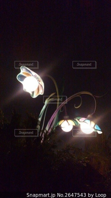 ステンドグラス風車なオシャレ街灯❗️の写真・画像素材[2647543]