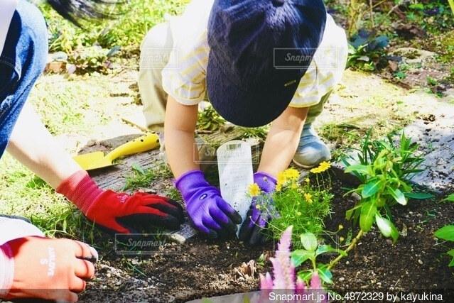 庭に花を植える子供の写真・画像素材[4872329]