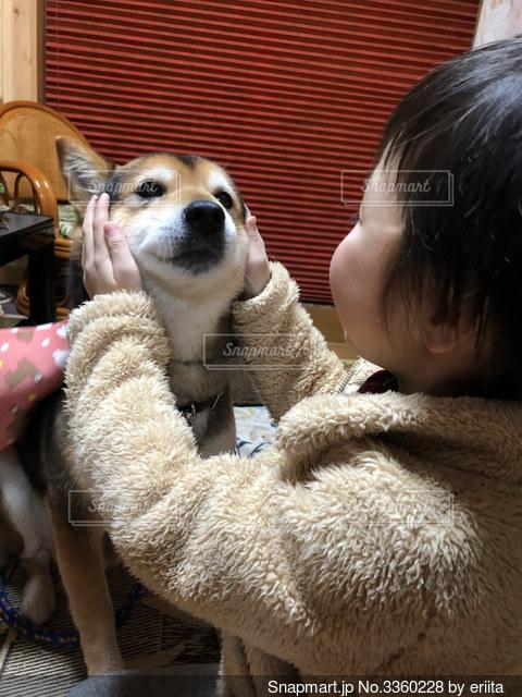 犬と戯れるの写真・画像素材[3360228]