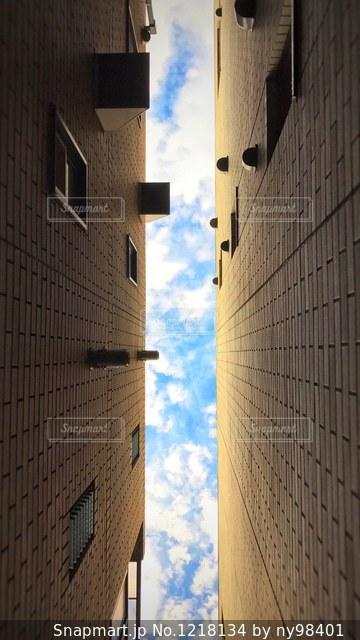 空を見上げるの写真・画像素材[1218134]