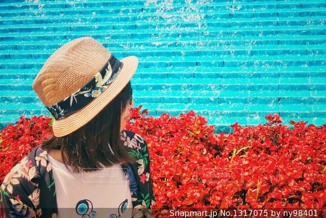 赤と水色の写真・画像素材[1317075]