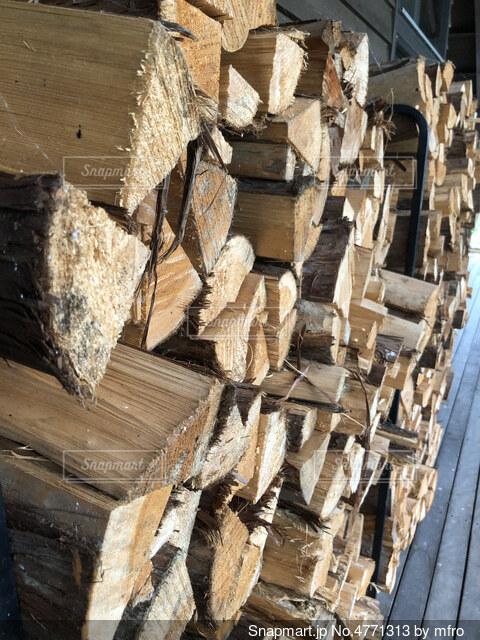 木の山。の写真・画像素材[4771313]