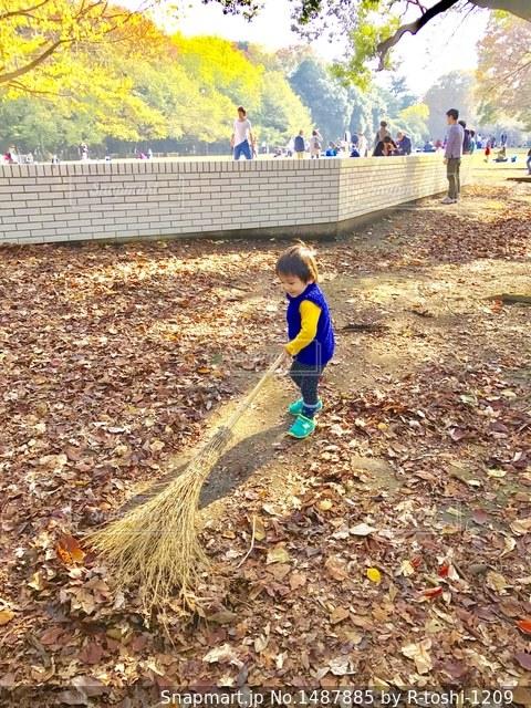 公園の落ち葉を上手に掃いて集めてね。の写真・画像素材[1487885]