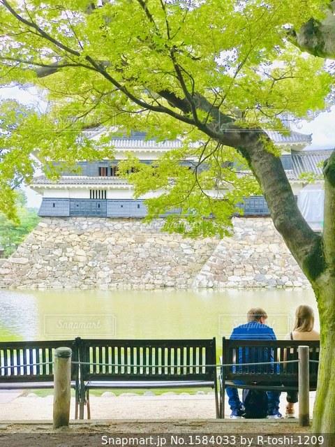 お城のお堀のベンチで語らう海外の方のカップルの写真・画像素材[1584033]