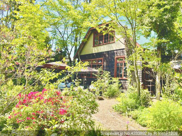 樹々に囲まれた古民家の庭でひとときの休息の写真・画像素材[4333892]