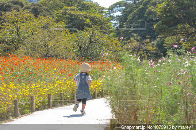 花畑と少女の写真・画像素材[4873915]