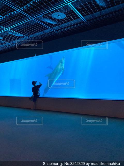 水のプールの中のフラットスクリーンテレビの写真・画像素材[3242329]