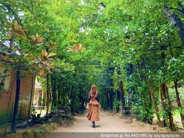 木の隣に立っている人の写真・画像素材[4431985]