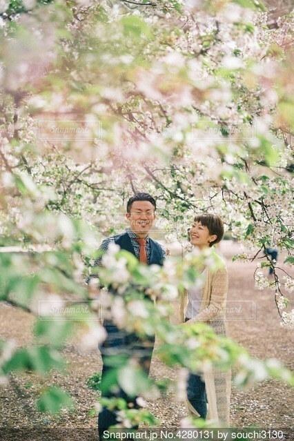 春の写真・画像素材[4280131]