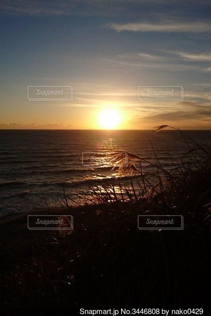 秋の夕日の写真・画像素材[3446808]