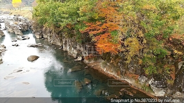 紅葉狩りの写真・画像素材[3870233]