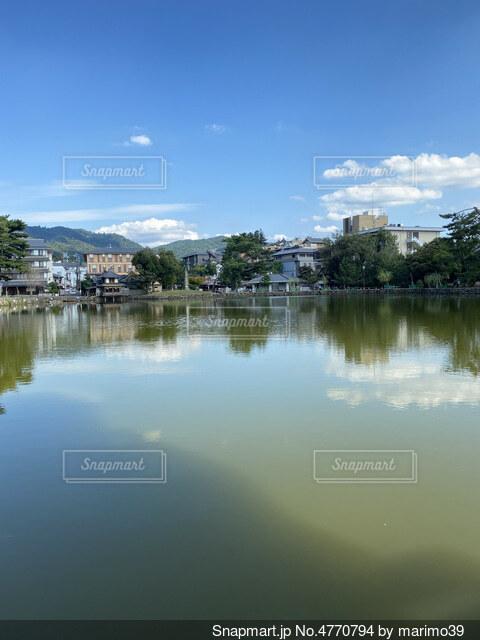 奈良の写真・画像素材[4770794]