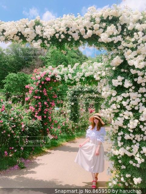 花の前に立っている女性の写真・画像素材[865950]