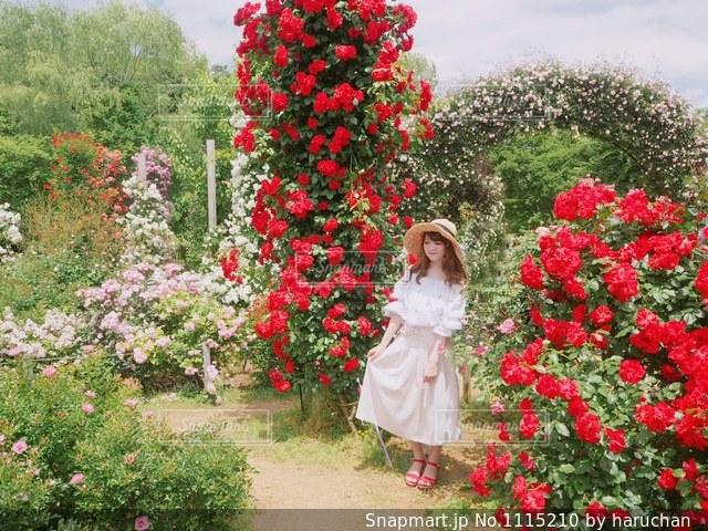 花の前に立っている人の写真・画像素材[1115210]