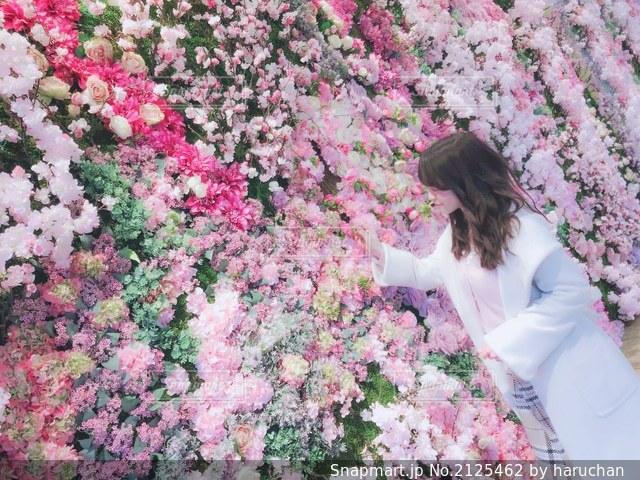 ピンクの花の中の女の子の写真・画像素材[2125462]
