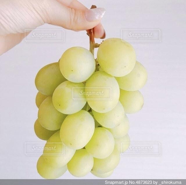 果物を持っている手の写真・画像素材[4873623]