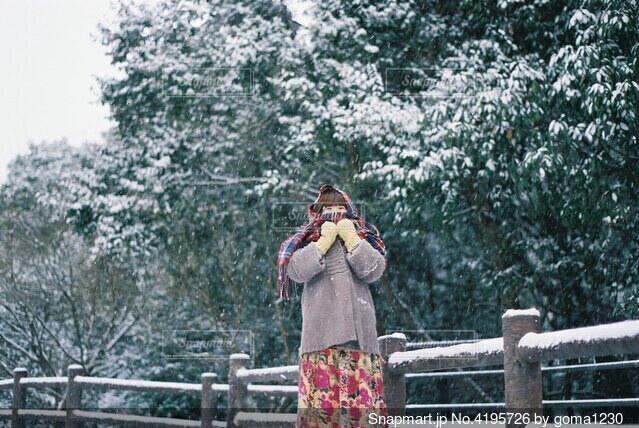 雪の日の写真・画像素材[4195726]